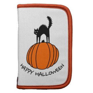Gato y calabaza asustados - Halloween Organizador