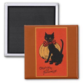 Gato y calabaza de Halloween Imán Cuadrado