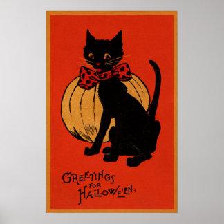 Gato y calabaza de Halloween Póster