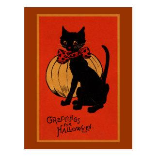 Gato y calabaza de Halloween