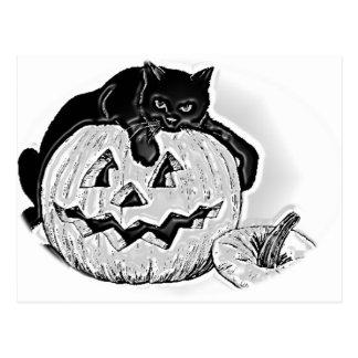 Gato y calabaza Halloween Postales