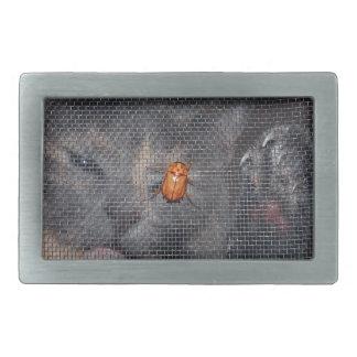 Gato y escarabajo del navidad hebilla cinturón rectangular