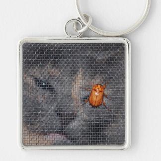 Gato y escarabajo del navidad llaveros