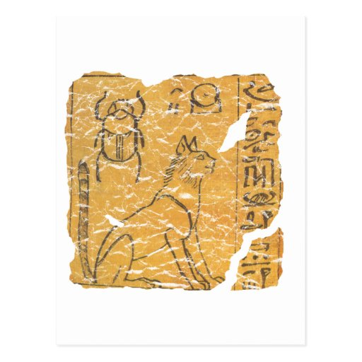 gato y escarabajo tarjeta postal
