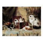 Gato y gatitos de la madre de Henriëtte Ronner-Kni Postales