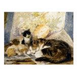 Gato y gatitos dormidos en el estudio del artista tarjetas postales
