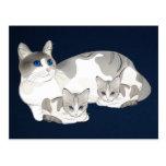 gato y gatitos postal