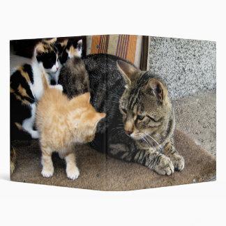 """Gato y gatitos que miran fijamente uno a carpeta 1"""""""