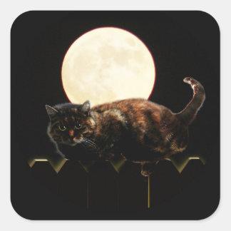 Gato y la Luna Llena Pegatina Cuadrada