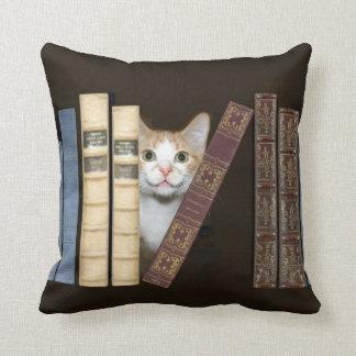 Gato y libros almohadas