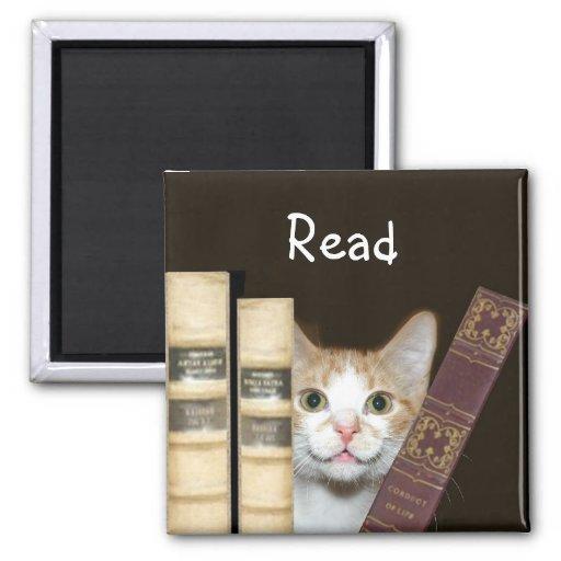 Gato y libros imán de frigorífico
