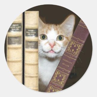 Gato y libros pegatina redonda