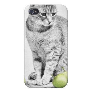 Gato y manzanas iPhone 4/4S fundas