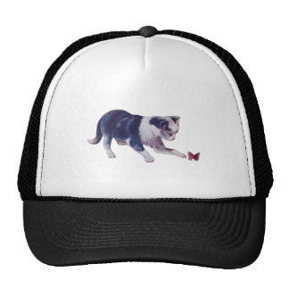 Gato y mariposa gorras