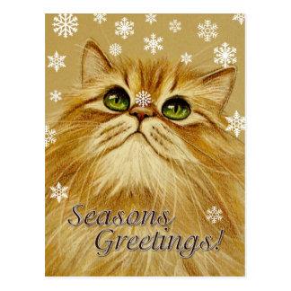 Gato y nieve - postal de los saludos de las estaci