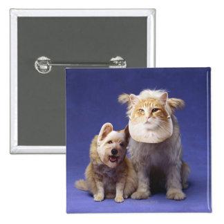 Gato y perro con las máscaras pin cuadrado