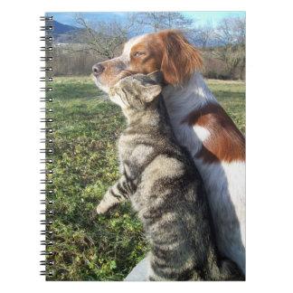 Gato y perro cuadernos