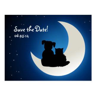Gato y perro lindos - ahorre la postal de la fecha