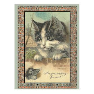 ¿Gato y ratón del vintage que me esperan Postal