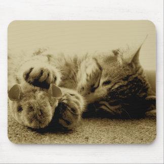 Gato y ratón alfombrillas de raton