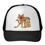 Gato y ratonera del dibujo animado gorra
