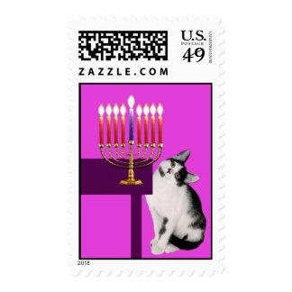 Gato y sellos rosados de Menorah Jánuca - hoja
