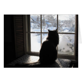 Gato y silencio tarjeta de felicitación