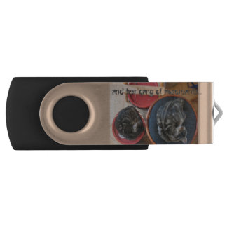 Gato y su cuadrilla de memoria USB 4f4f4f de los Memoria USB 2.0 Giratoria