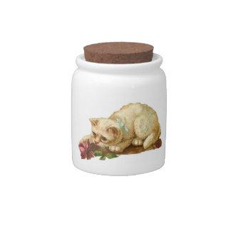 Gato y tarro color de rosa del caramelo jarra para caramelo