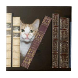 Gato y teja de los libros