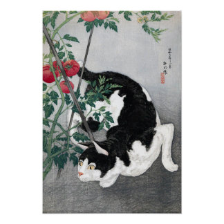 Gato y tomate Takahashi Shôtei