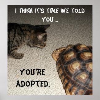 """Gato y tortuga - """"le adoptan """" póster"""