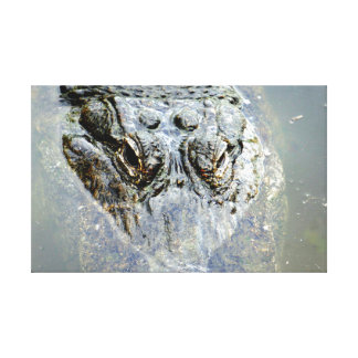 Gator 2 canvas print