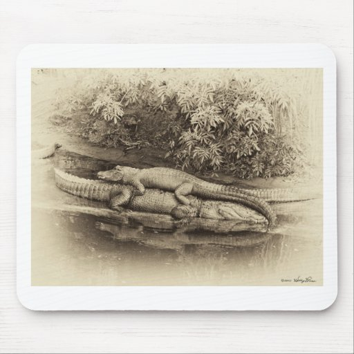 Gator Back Ride Mouse Pads