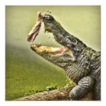 """Gator Catching Lunch 5.25"""" Square Invitation Card"""
