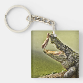Gator Catching Lunch Double-Sided Square Acrylic Keychain