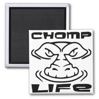 Gator Chomp Life 2 Inch Square Magnet