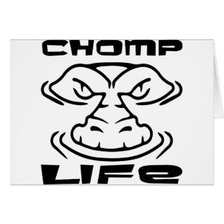 Gator Chomp Life Greeting Cards