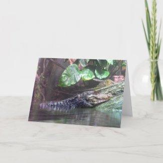 'Gator Grins - Greeting Card card