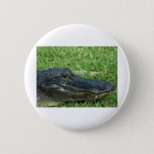 Gator in grass pinback button