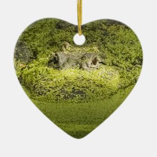 Gator Lurking in Duckweed - Nature Photograph Ceramic Ornament