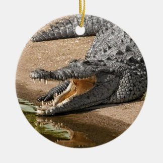 Gator Portrait  with Mouth Wide Open Ceramic Ornament