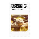 GATOR POSTAGE STAMPS