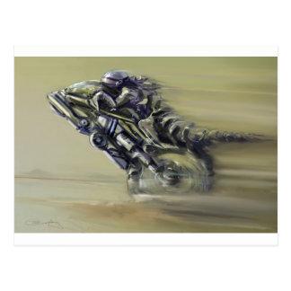 Gator Rider Postcard