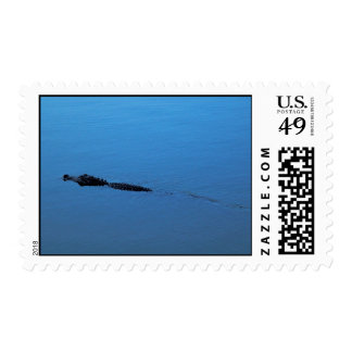 Gator Trail Postage - Matching Card!