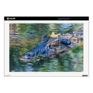 """Gator with a crown 17"""" laptop decal"""