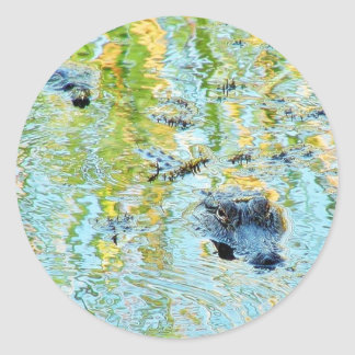 Gators Aligators Swamps Classic Round Sticker