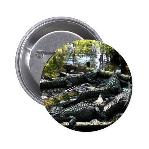 Gators Button