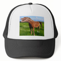 Gatorse Trucker Hat