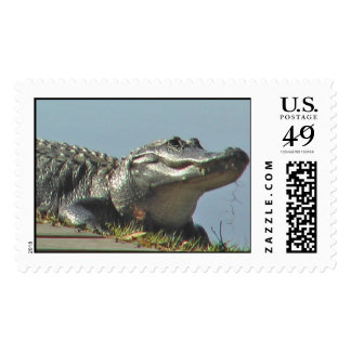 gatorstamp stamp